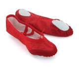 Red Canvas Slippers  BL700202